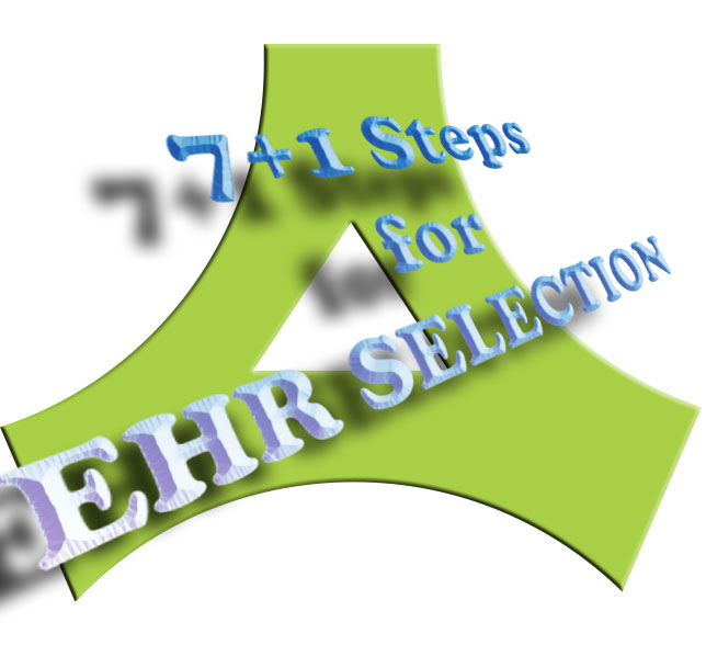 7+1 bonus steps for EHR selection for local health departments