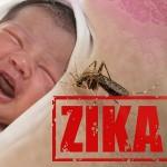 zika29
