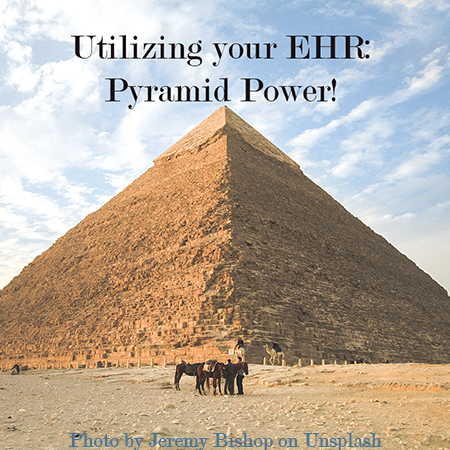 Pyramid Power: EHR Support and On-going Training Set Apart the Best from the Rest